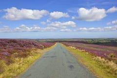 Сельская дорога с пейзажем вересковой пустоши Стоковые Изображения RF