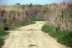 Сельская дорога Техаса Стоковое Изображение