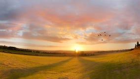 Сельская панорама ландшафта захода солнца Птицы летая силуэт Стоковые Изображения