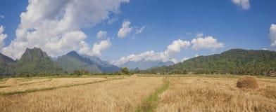 Сельская панорама ландшафта Стоковые Изображения RF