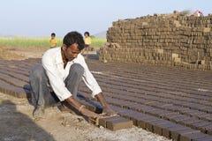 Сельская работа Стоковые Изображения RF