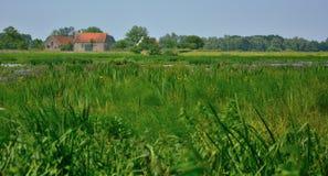 Сельская Фландрия, старая ферма стоковые фотографии rf