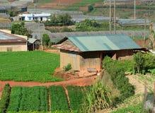 Сельские дома на холме в Ninh Thuan, Вьетнаме Стоковое Изображение