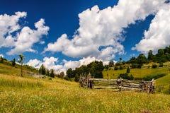 Сельские поля Стоковое фото RF
