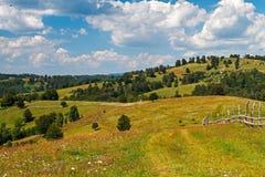 Сельские поля Стоковые Изображения RF