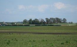 Сельский ландшафт Айовы Стоковые Изображения