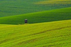 Сельский ландшафт весны Стоковое фото RF