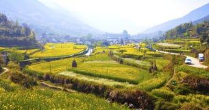 Сельский ландшафт в Wuyuan, провинции Цзянси, Китае. Стоковое Изображение RF