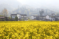 Сельский ландшафт в Wuyuan, провинции Цзянси, Китае. Стоковое Фото