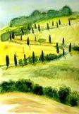 Сельский ландшафт в тенях зеленого цвета Стоковое Изображение RF