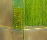 Сельский ландшафт с акром от горячего воздушного шара Стоковые Фото