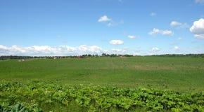 Сельский ландшафт с зеленым полем и деревней далеко Стоковые Изображения