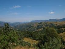 Сельский ландшафт с коровой в цветах осени где-то в Трансильвании Румынии Стоковая Фотография RF