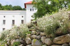 Сельский ландшафт с старым монастырем в Румынии Стоковое Изображение