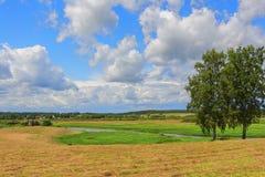 Сельский ландшафт Стоковая Фотография