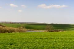 Сельский ландшафт. Стоковые Фото