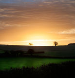 Сельский восход солнца утра над полями Стоковое Изображение RF