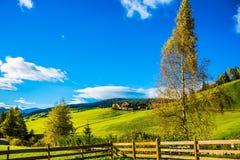 Сельский выгон Стоковая Фотография RF