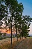 Сельский заход солнца на холмах в Reggio Emilia, Италии Стоковое Изображение RF