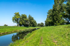 Сельский канал воды в лесе Стоковое Изображение