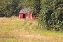 Сельский красный сарай сада Стоковое Фото