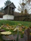 сельский домочадец, сельский дом и сад, сельская идиллия стоковые изображения rf