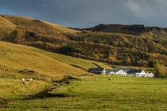 Сельский дом с полем и предпосылкой горной цепи surround сосны Стоковое фото RF