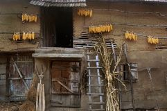 Сельский дом Стоковые Фотографии RF