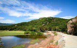 Сельский пейзаж в Phan звенел, Вьетнам стоковое фото rf