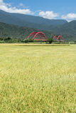 сельский пейзаж стоковое фото