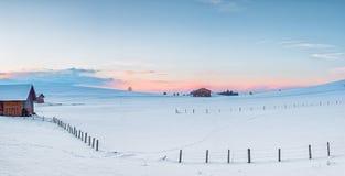 Сельский луг с снегом на зиме стоковые изображения