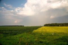 Сельское поле, жать стоковая фотография rf
