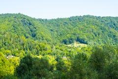Сельское свойство в лесе стоковые изображения