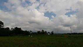 Сельское сумерк стоковое фото