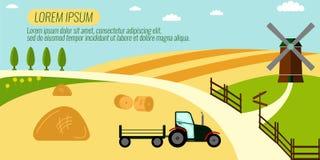 Сельское хозяйство земледелия и сельская предпосылка ландшафта Стоковая Фотография