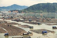 Сельское хозяйство рыб морепродуктов, рыбозавод на море, Fujiang, Китае стоковые изображения rf