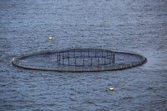 Сельское хозяйство рыб Стоковое Фото
