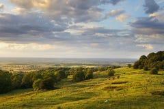 Сельское Cotswolds Стоковое Изображение RF