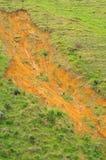 сельскохозяйственне угодье Стоковое Изображение RF