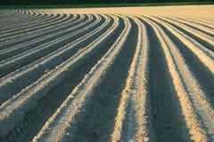 сельскохозяйственне угодье Furrows на аграрном крае Стоковые Фотографии RF
