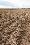 сельскохозяйственне угодье Furrows на аграрном крае Стоковое Фото