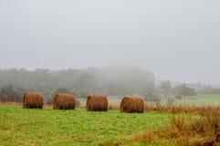 Сельскохозяйственное угодье горы в горах Вирджинии Стоковое Изображение RF