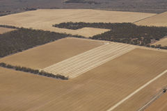 Сельскохозяйственное угодье Стоковые Изображения RF