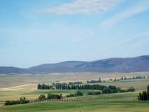 Сельскохозяйственное угодье Стоковые Фото