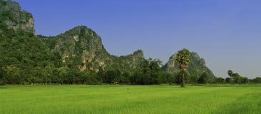 Сельско Таиланда стоковое фото