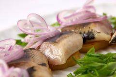 Сельди с луками и картошками Стоковое Изображение RF