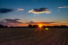 Сжатое поле зерна на сельской местности на заходе солнца Стоковые Изображения RF