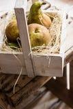 Сжатые зрелые груши конференции на соломе в винтажной деревянной коробке, окном, естественный мягкий свет Стоковые Фотографии RF