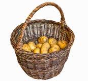 Сжатые картошки в старой корзине wicker Стоковые Фото