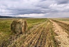 Сжиманное поле с креном сена стоковое изображение